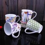 (ECU0021) Cup